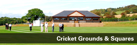 Cricket Grounds & Squares
